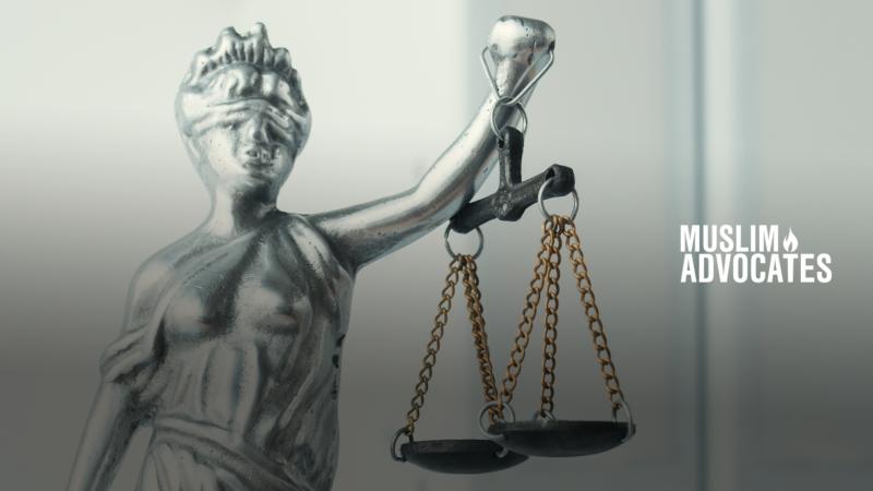 Lawsuit Gfx 3